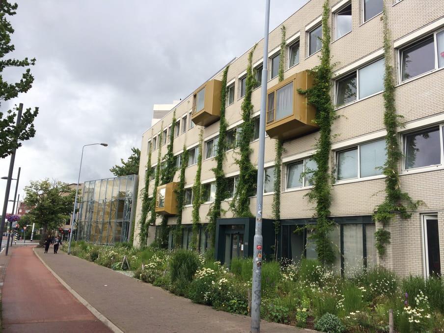 Flexwoningen van corporatie Woonbedrijf in Eindhoven