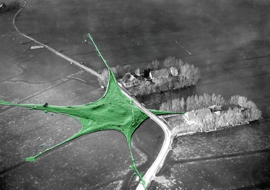 collage van een landschap met bacterien